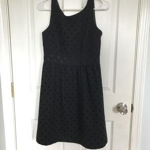 Ann Taylor Loft Polka Dot Dress